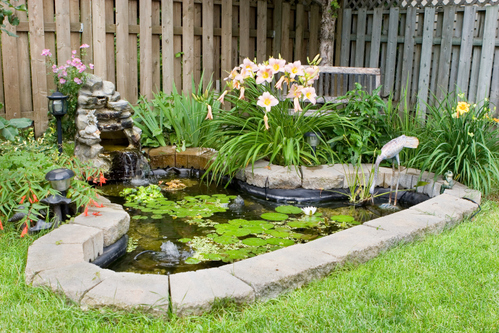 Comment am nager un bassin dans son jardin for Amenager son jardin en normandie